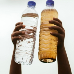 World Water Day: Give the gift of clean water and change the world